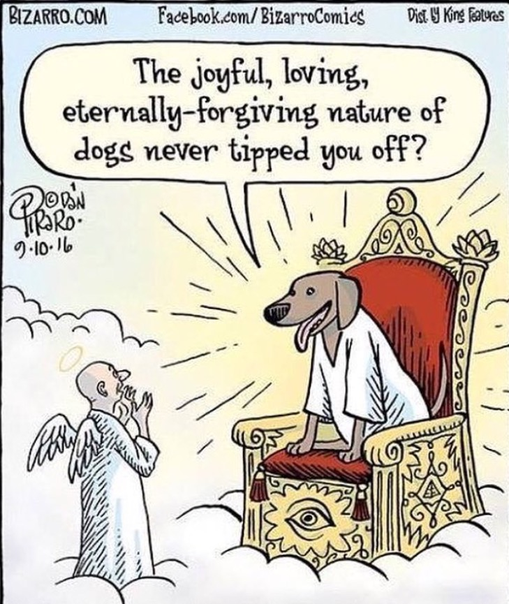 Cartoon Of The Day: GoD And DoG